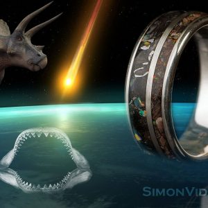 Fossil Meteorite Megalodon Triceratops Space Ring