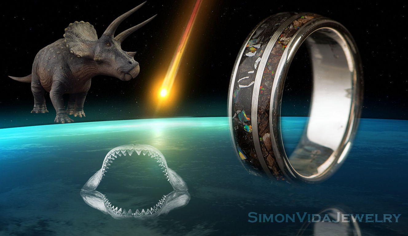 Wedding band Male engagement ring Meteorite ring Sterling silver ring Fossil Jewelry Dinosaur bone ring Triceratops ring